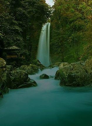 Hike To GitGit Waterfall