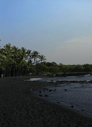 Punalu'u Black Sand Beach In Big Island