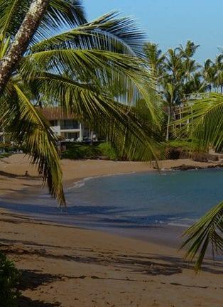 Snorkel In Napili Bay