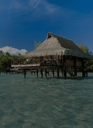 VAHINE ISLAND