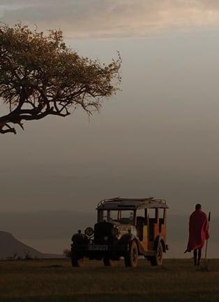 The Best Safari Honeymoon Destinations