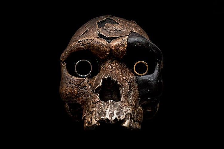 An old skull with rings for eyes