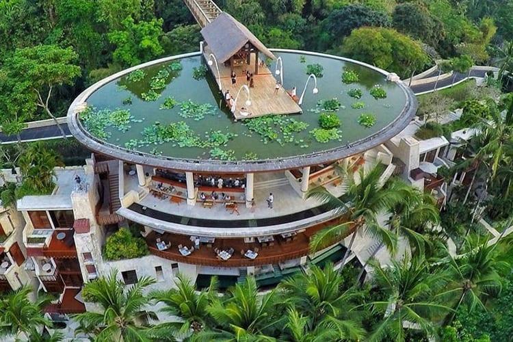 Four Seasons Sayan Ubud Bali Jungle