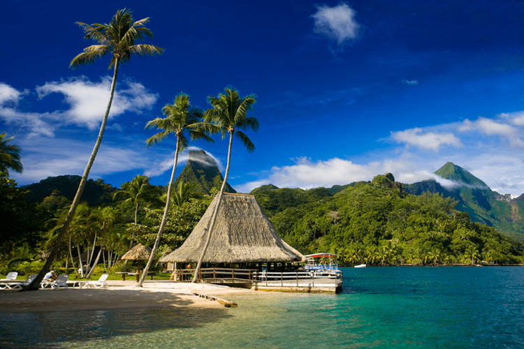 Moorea Honeymoon