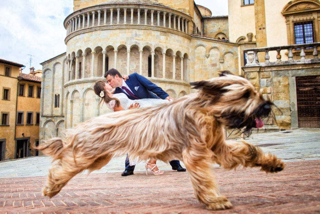 How to Include Your Dog in Your Wedding: Do's and Don'ts