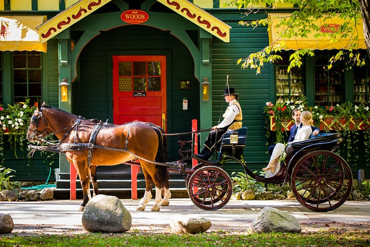 A horse drawn buggy in front of a green house