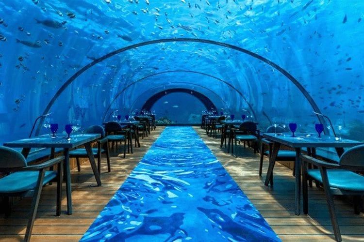 Maldives Honeymoon - View of tables in deep sea underwater dome restaurant