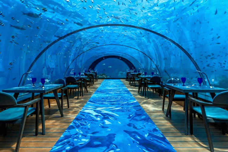 Maldives Honeymoon - View of tables in deep sea underwater dome restaurant