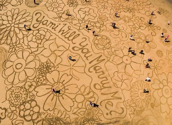 The Beach Art Proposal